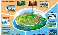 Clases de ecosistemas