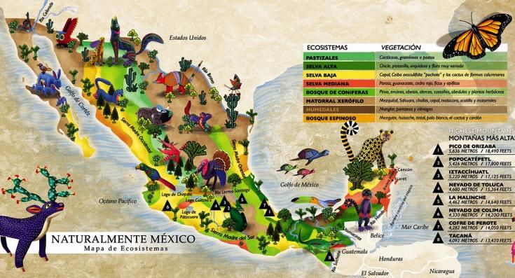Resultado de imagen para ecosistema de mexico