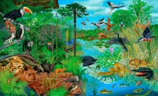 ¿Cuál es la importancia de los ecosistemas?